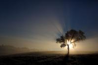 Lever de soleil : Lever de soleil, Hiver