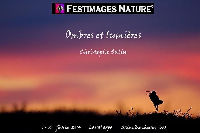 festimages 2014