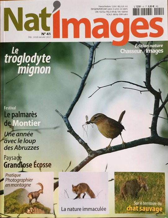 natimage-41