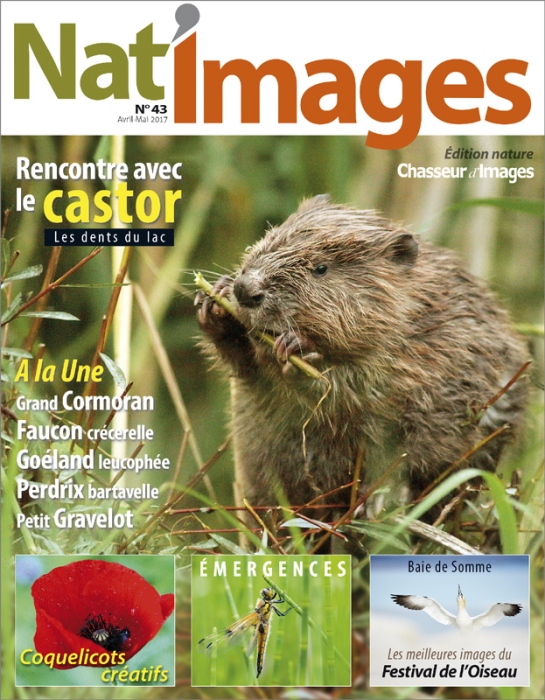 Natimages43