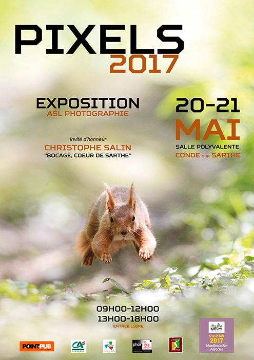 Affiche PIXELS 2017